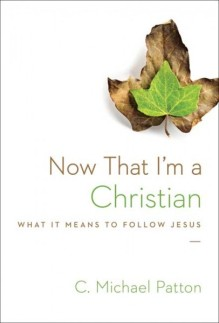 Now-that-im-a-Christian-406x600